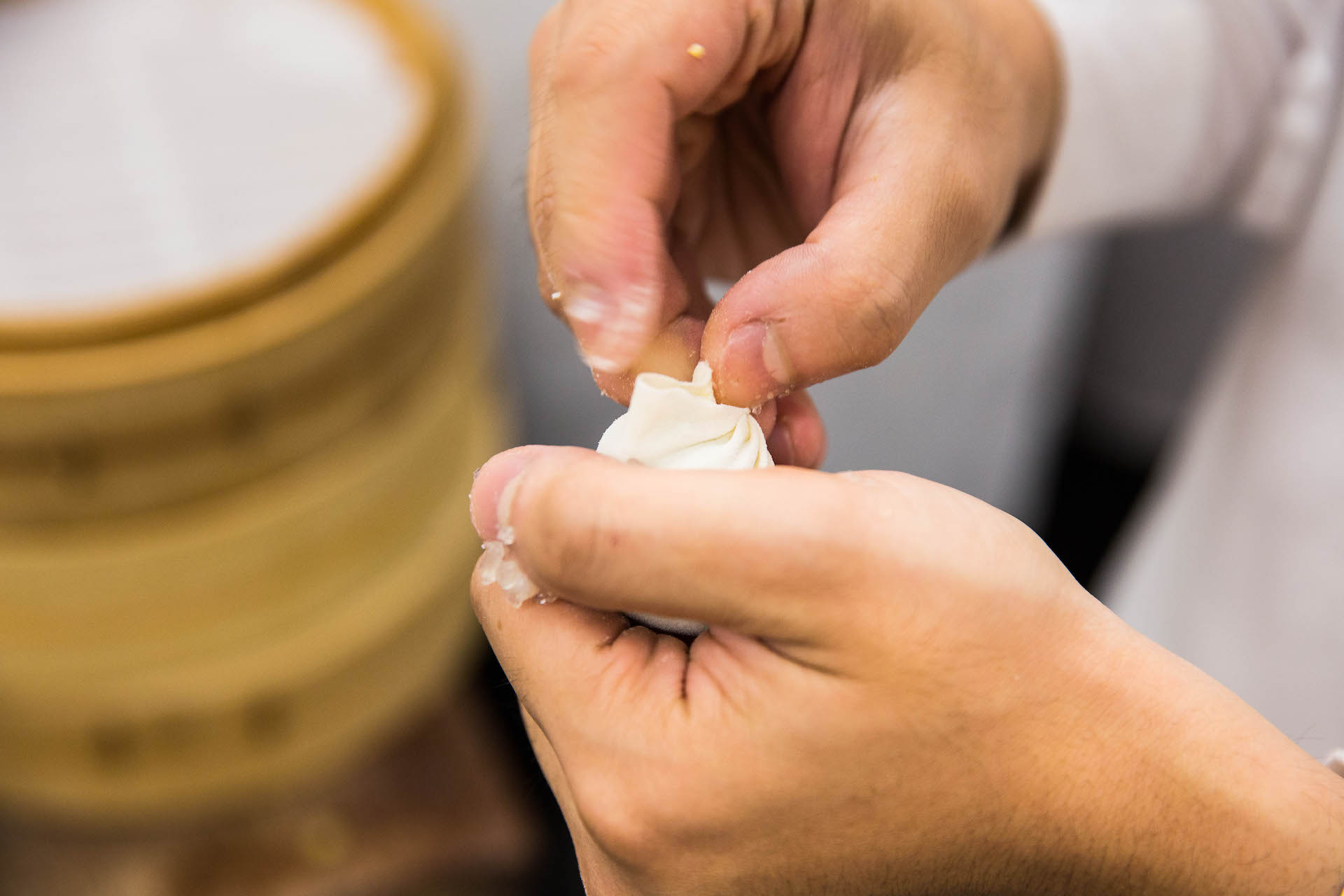 A master dumpling chef making a perfect 18-fold Xiao Long Bao (soup dumpling) at the original Din Tai Fung.