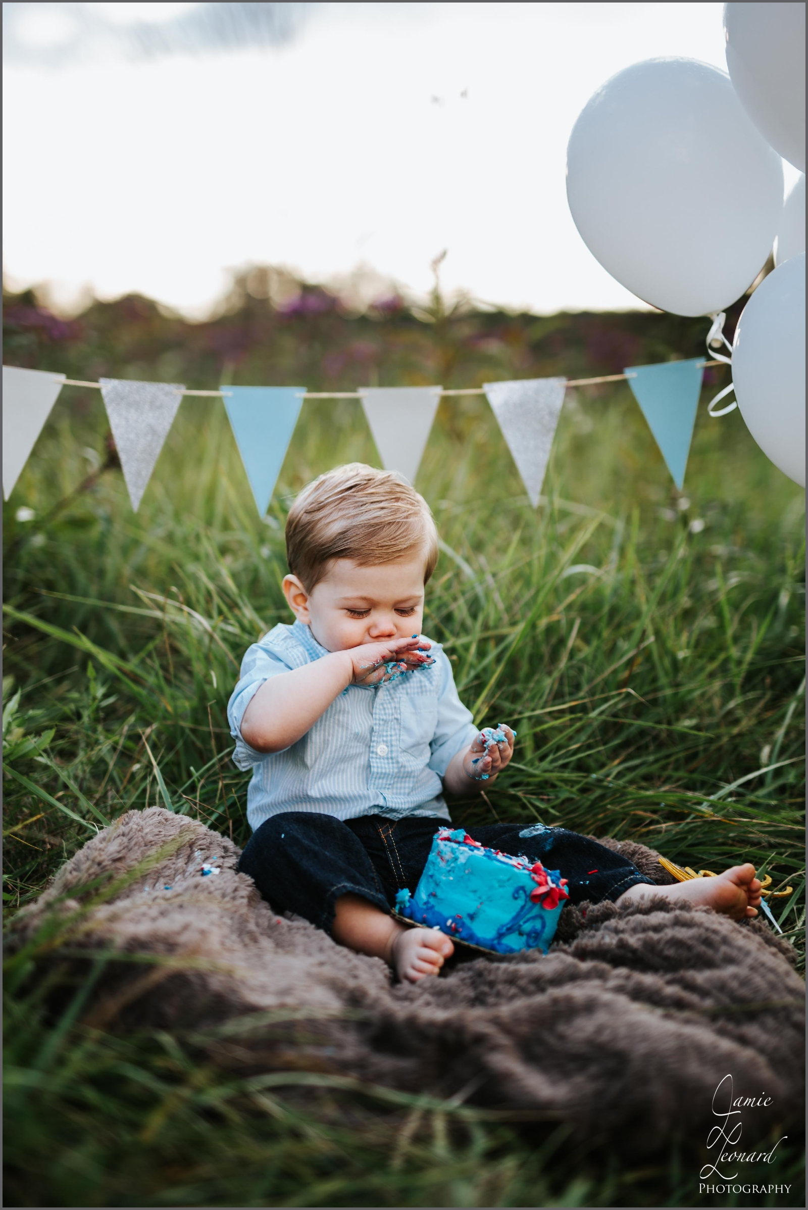 first_birthday_Jamie_leonard_photography_cake_greensburg_pa.jpg