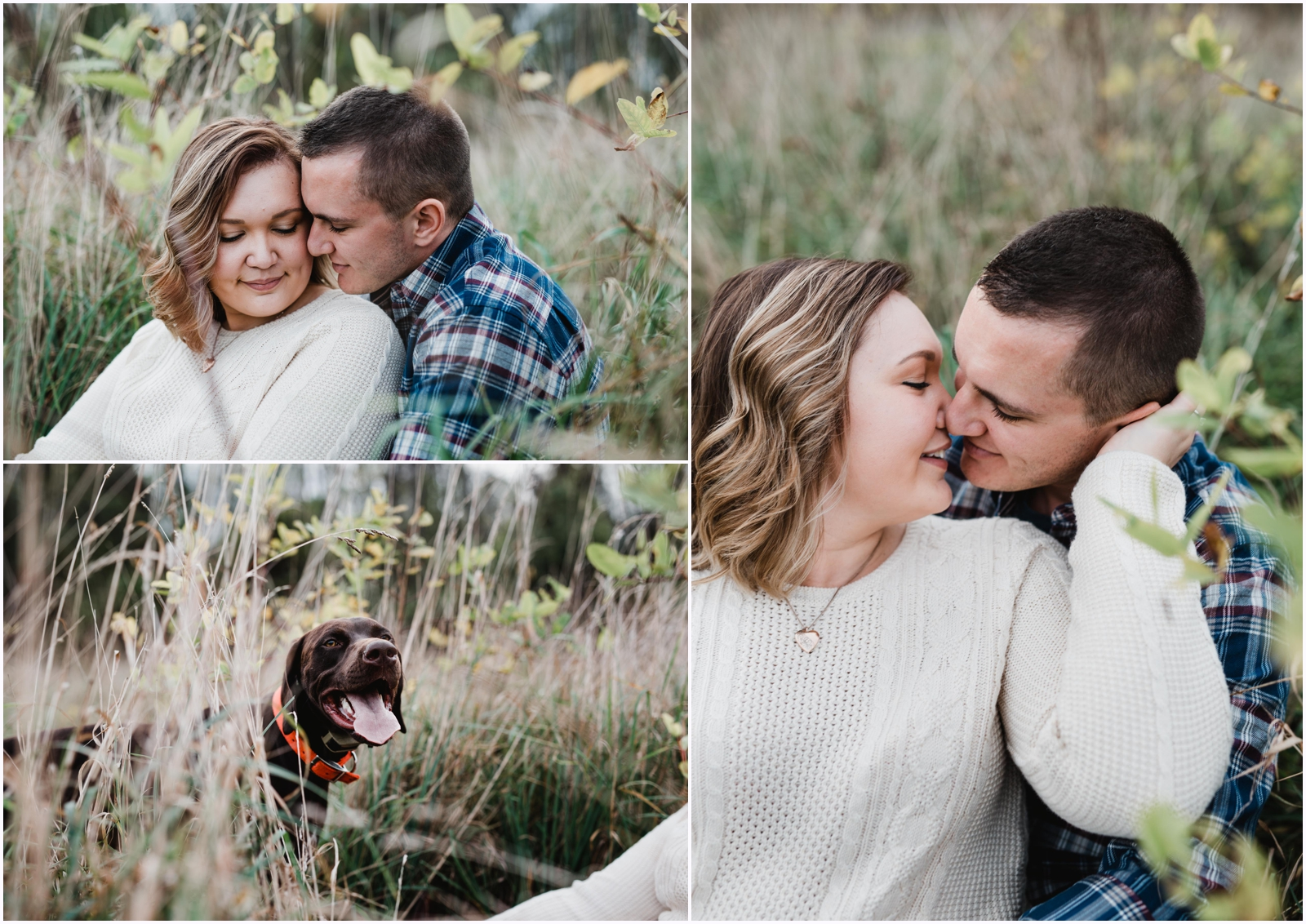 jamie_leonard_photography_engaged_fayette_belle_vernon_pa_wedding_sunset_dogs.jpg
