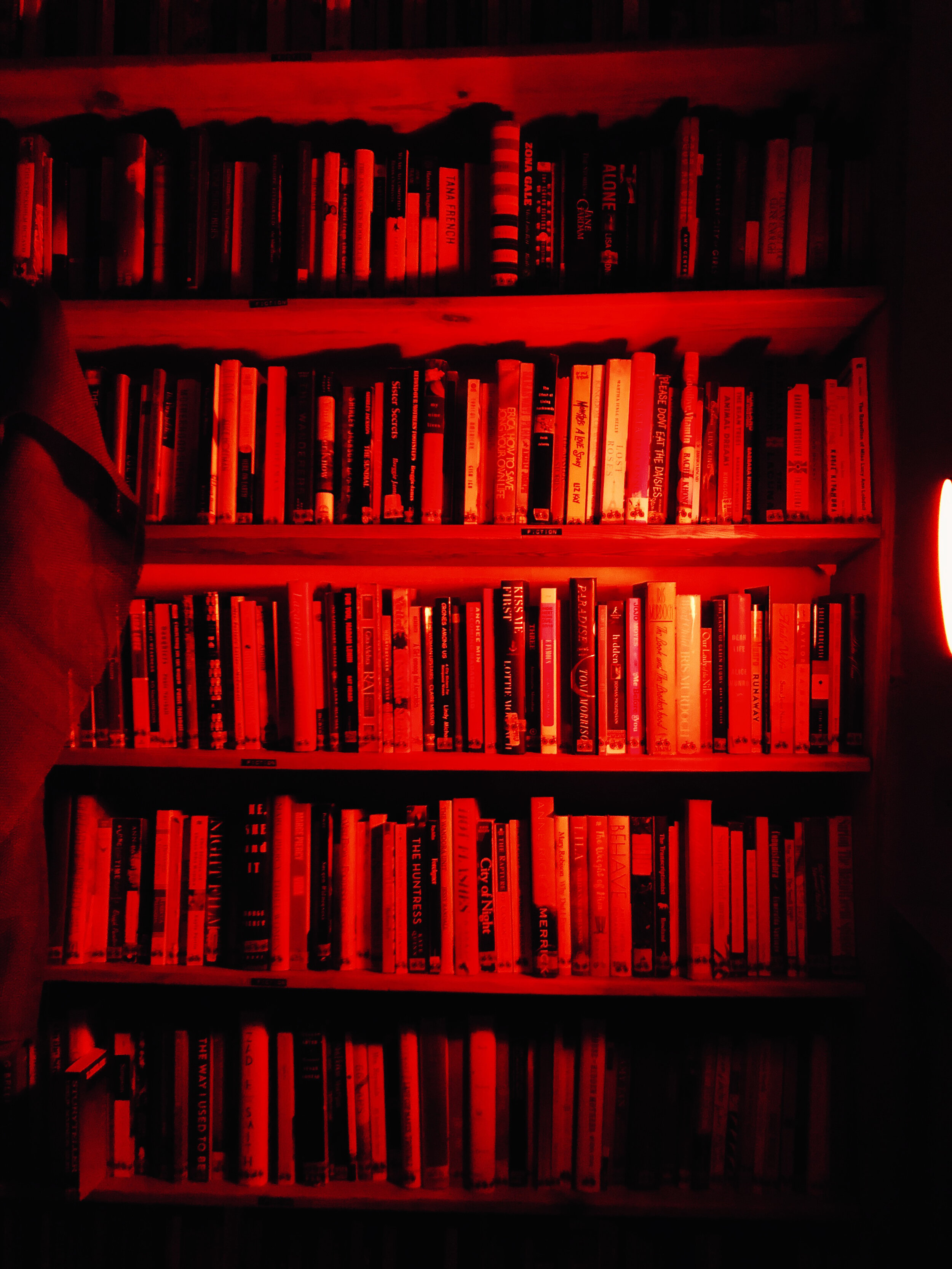 The Red Room brings a new light to queer feminist texts.