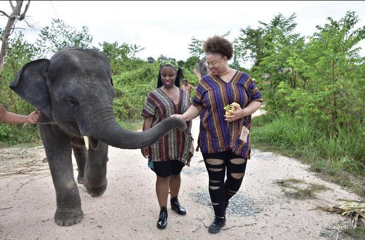 Feeding Baby Elephant.jpg