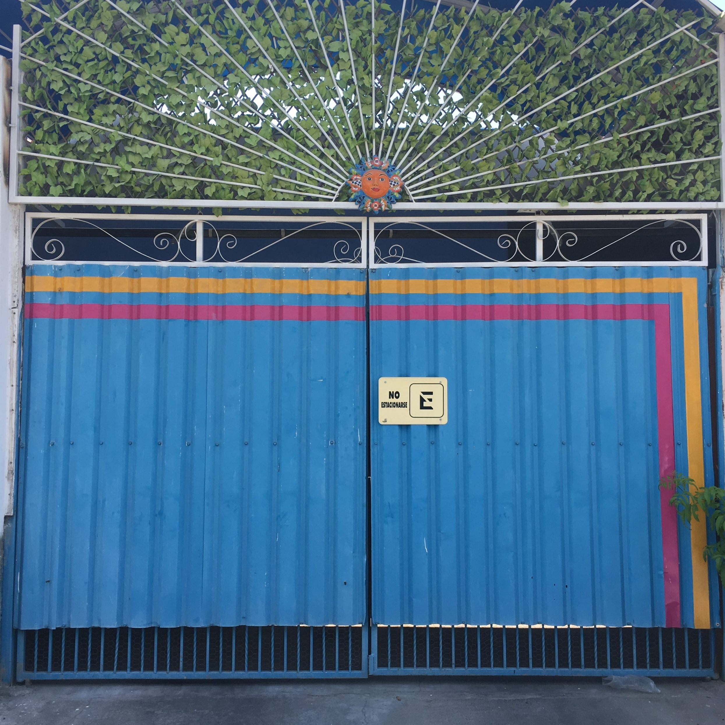 Blue garage door in La Paz, Mexico | Watson & Walls