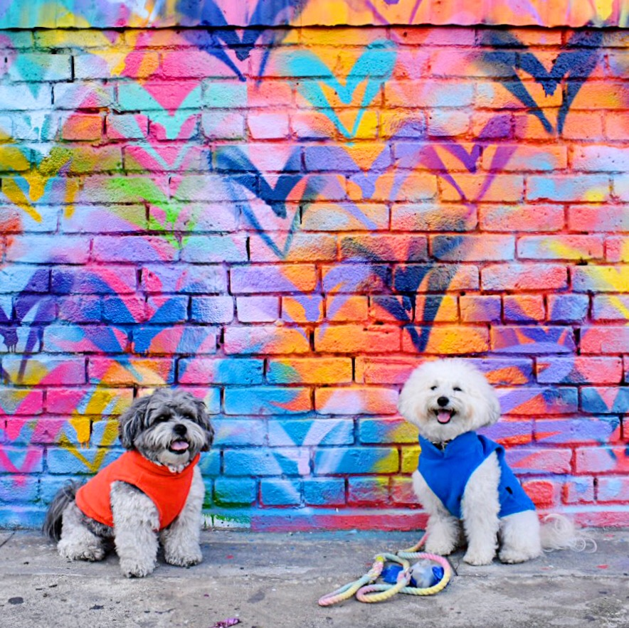 Watson and his BFF Arne at the Heart Wall in dog-friendly Arts District DTLA | Watson & Walls