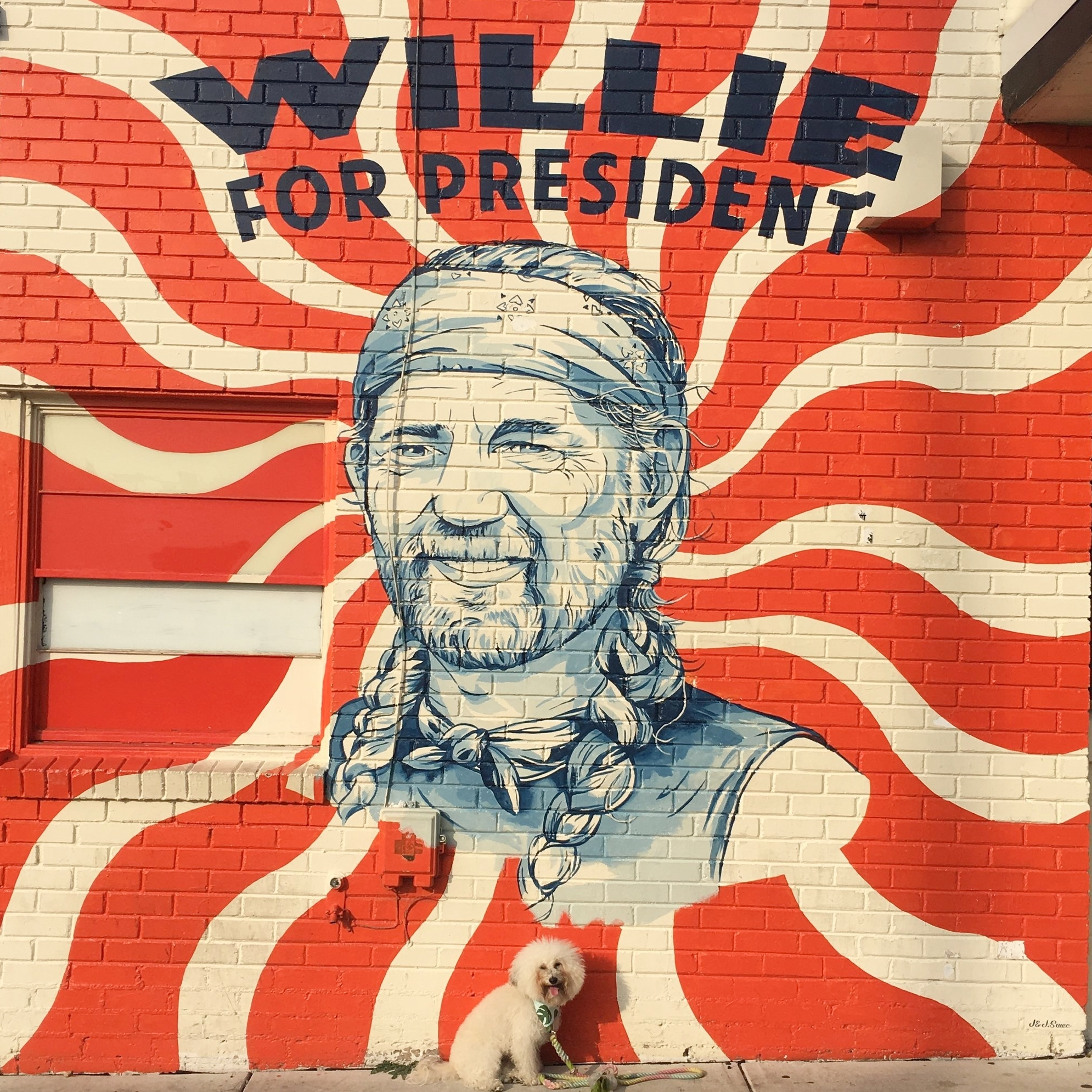 Watson by the Willie Nelson Mural in South Congress Austin, TX | Watson & Walls