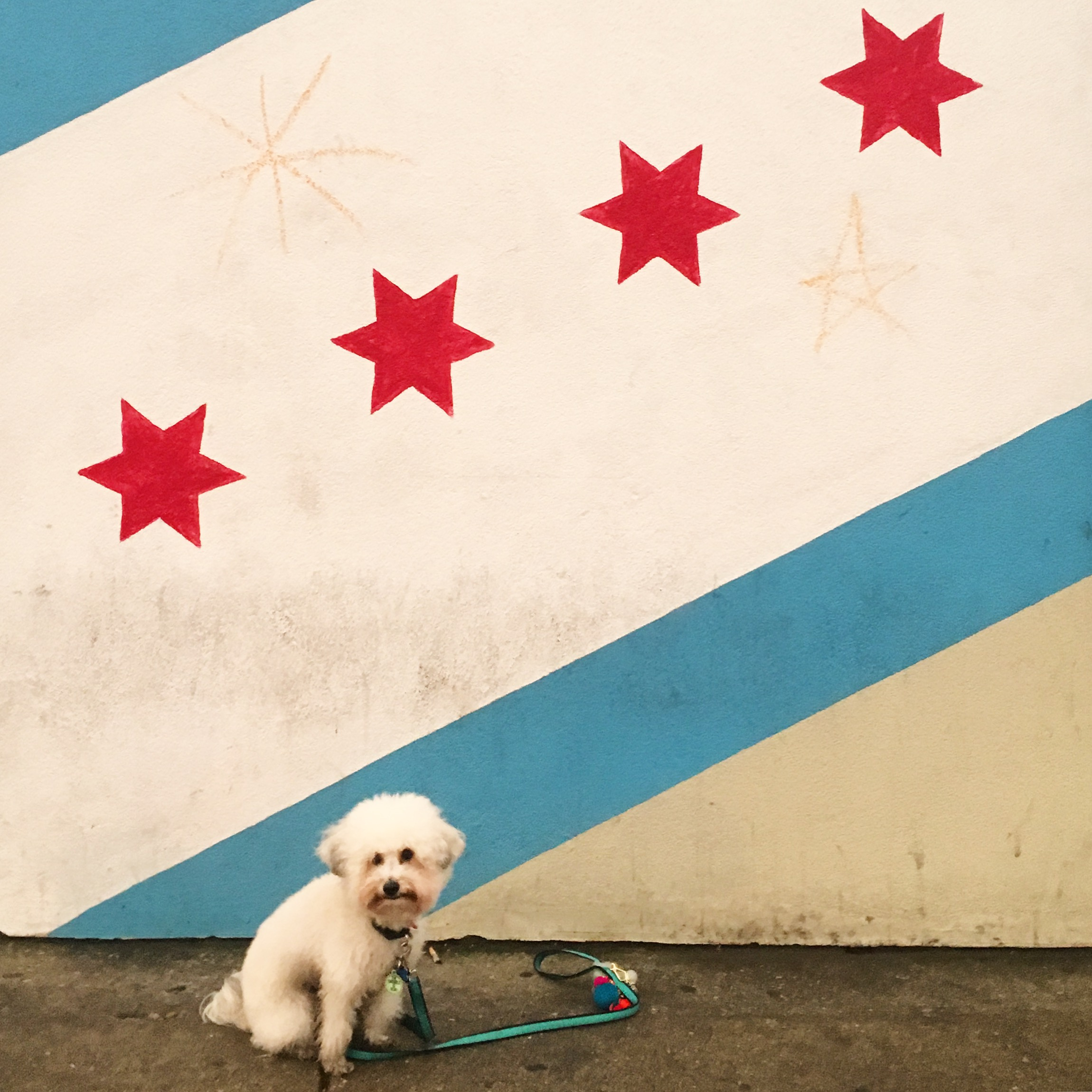Chicago flag mural in Chicago, IL | Watson & Walls