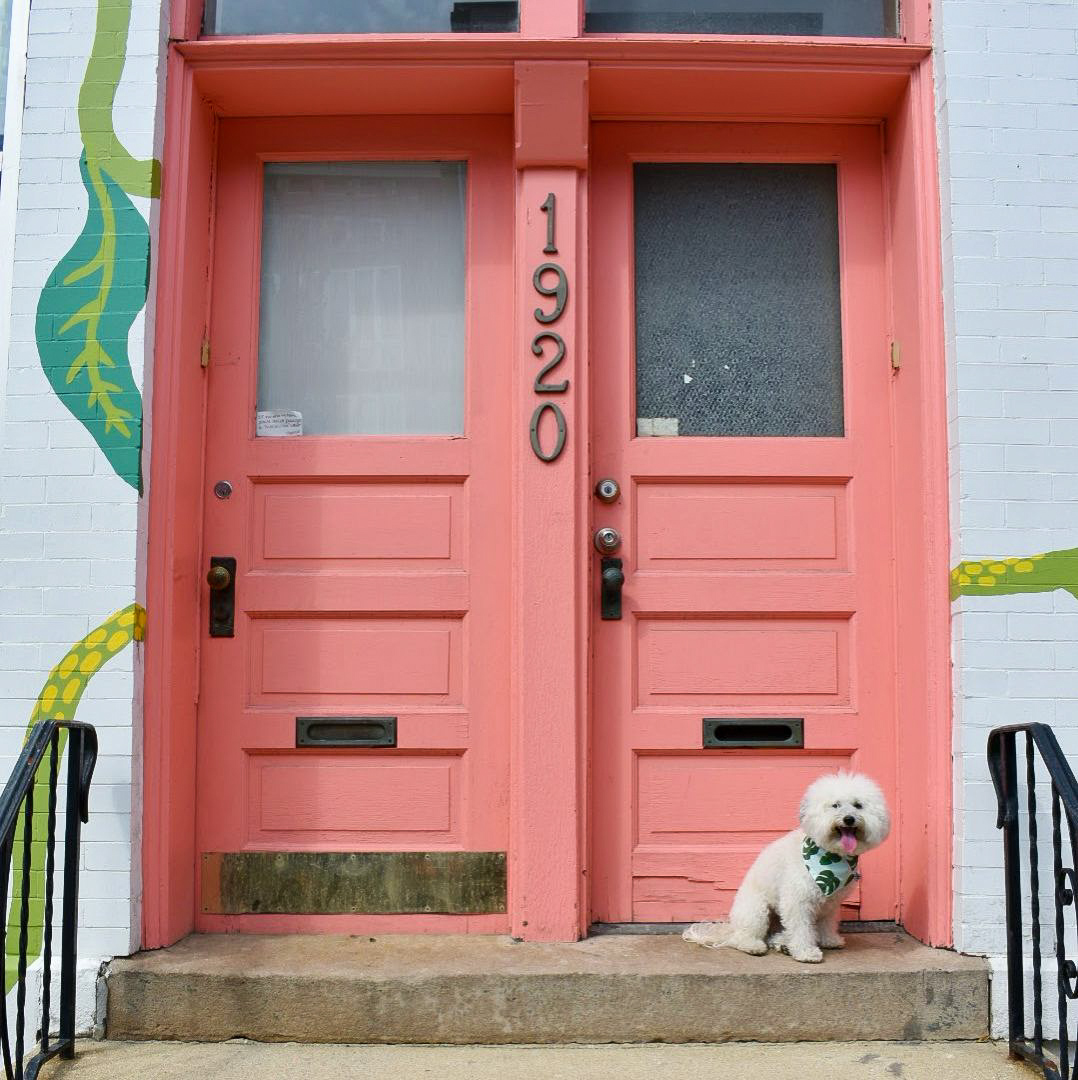 Pink stoop by spa Penny Kraft + Co. in dog-friendly Chicago | Watson & Walls