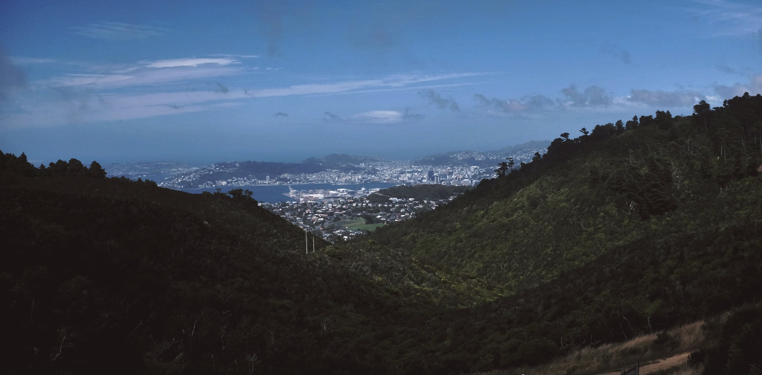 A first view of Wellington.