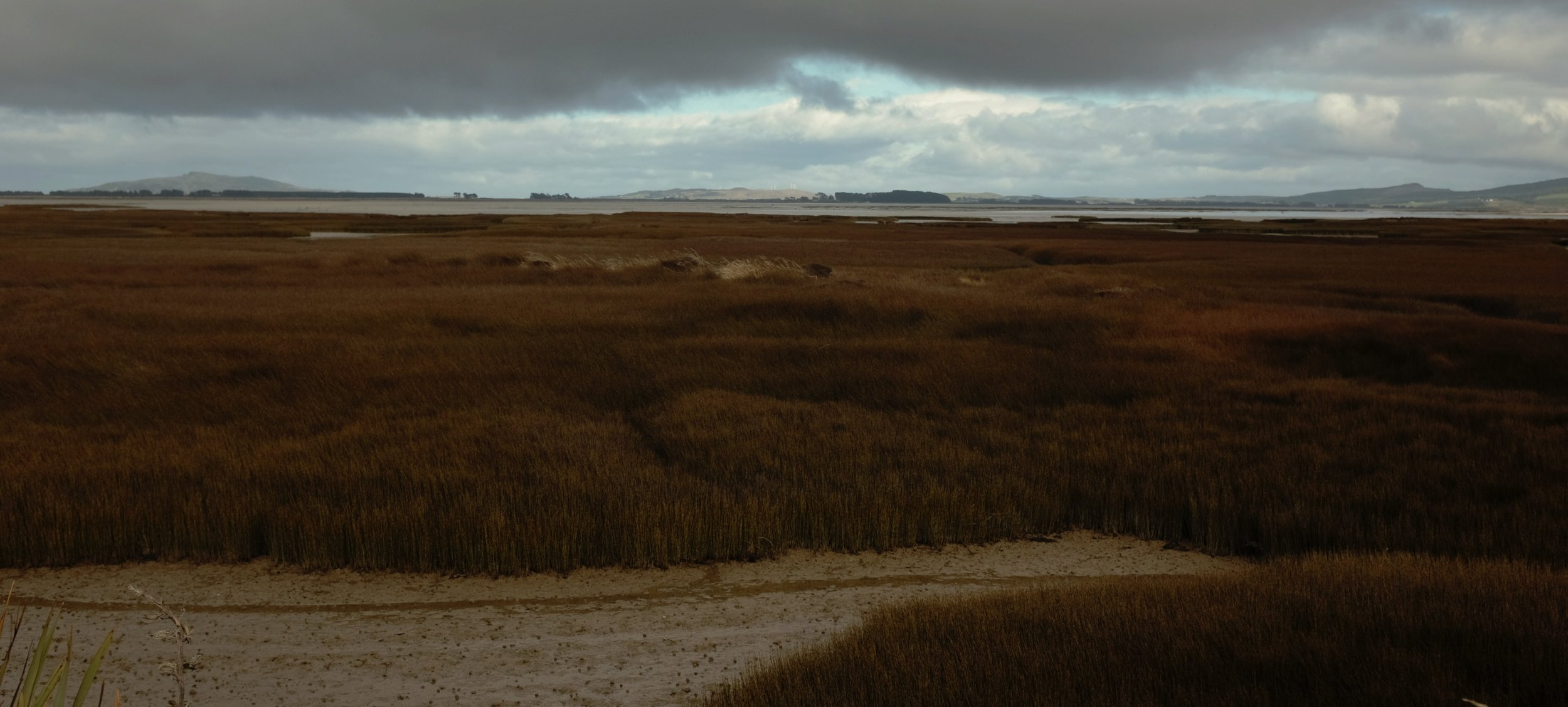 The marshes south of Invercargill, and (maybe?) Bluff looming in the lefthand distance.