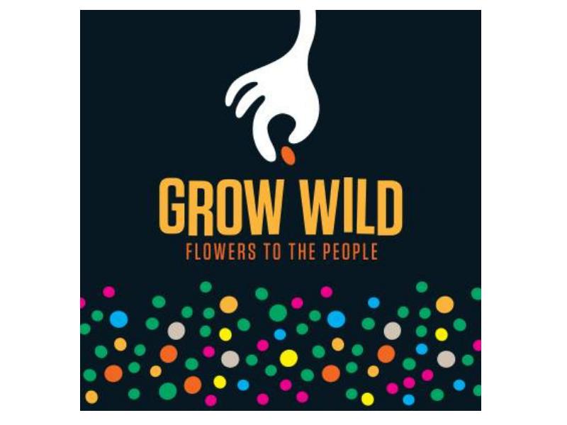 grow wild freelance writer scotland.png