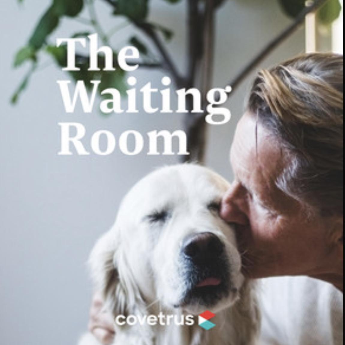 Covetrus-seo-podcast-briony-cullin-marketing-for-vets-veterinarians.jpg