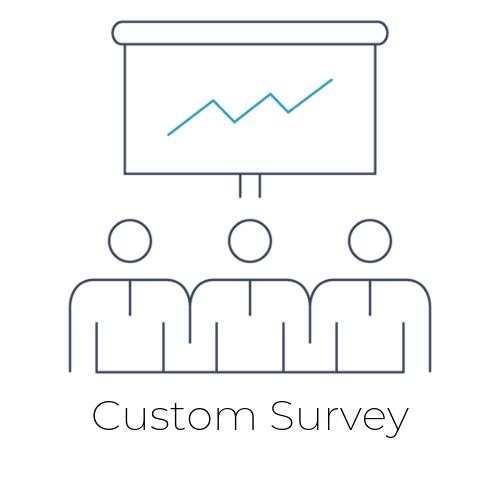 Custom Survey.png