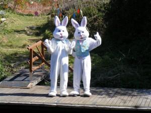 Easter-Bunnies-300x225.jpg