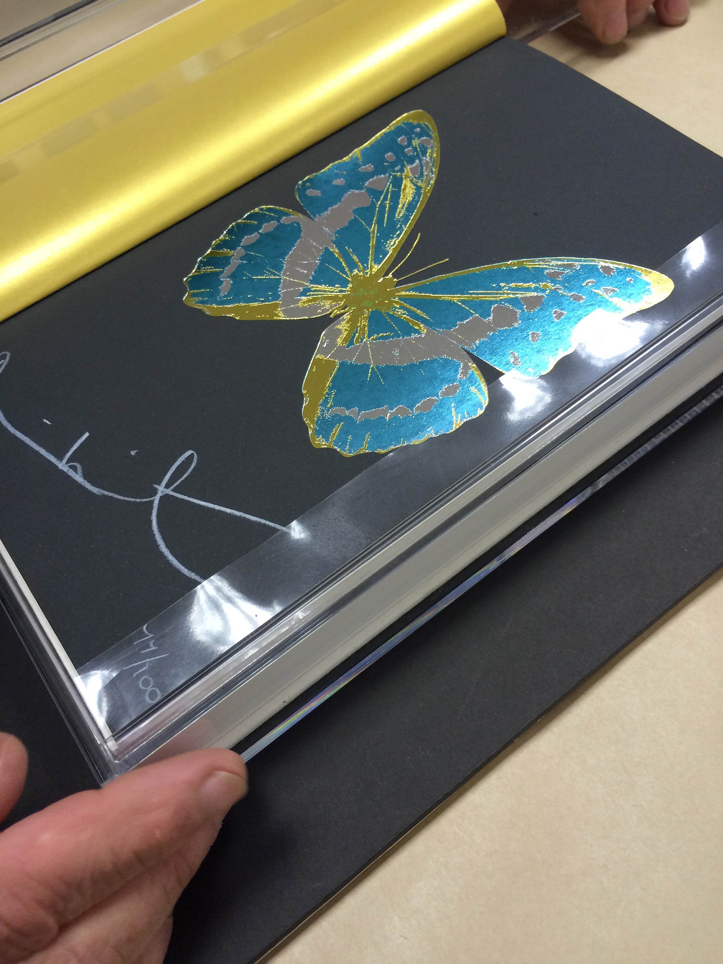 Framed limited edition, Damien Hirst signed artist's book.