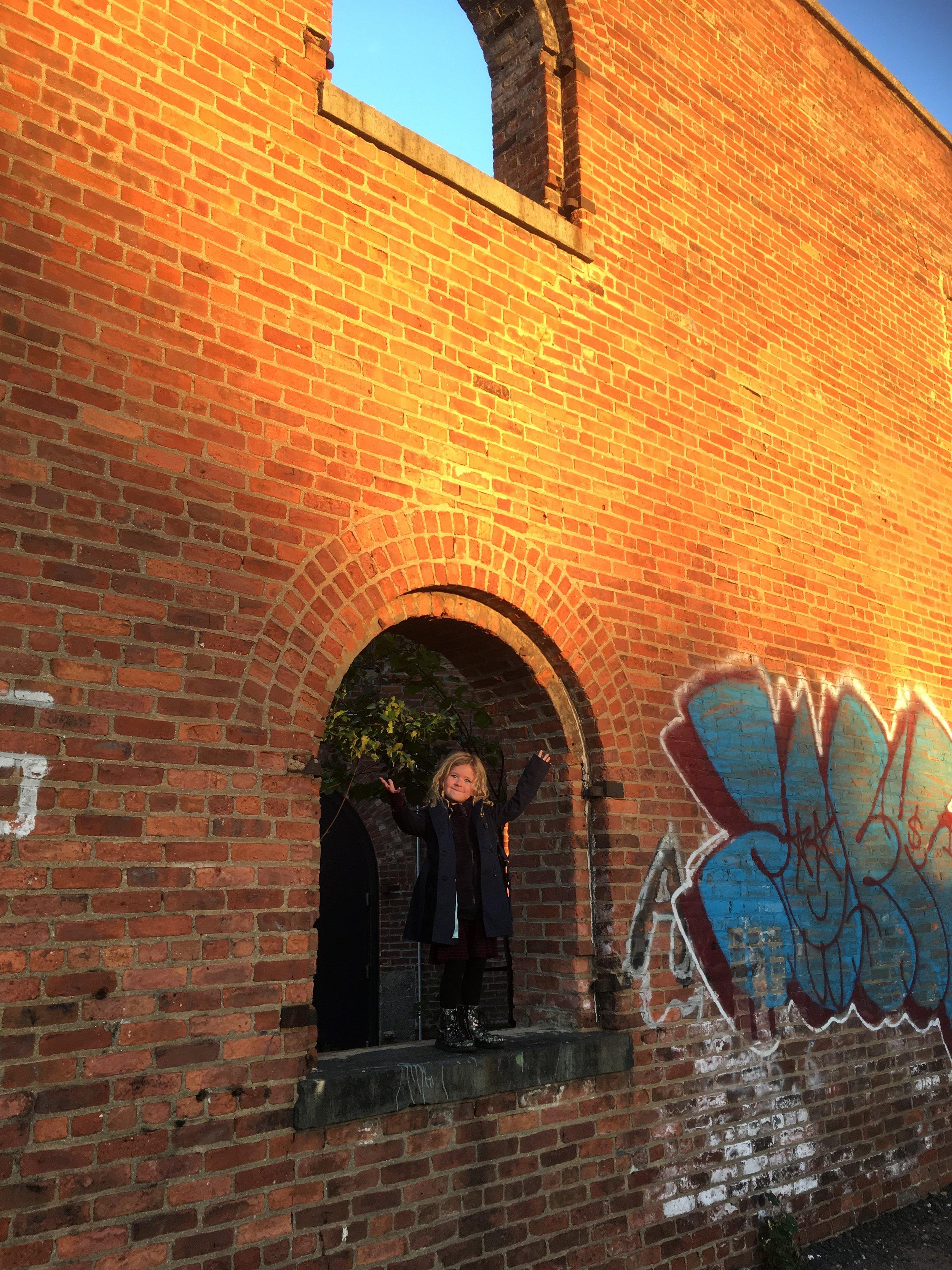 Brooklyn | Joan Lily