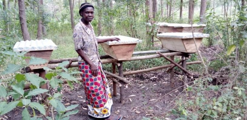 Woman checking on her bee hives