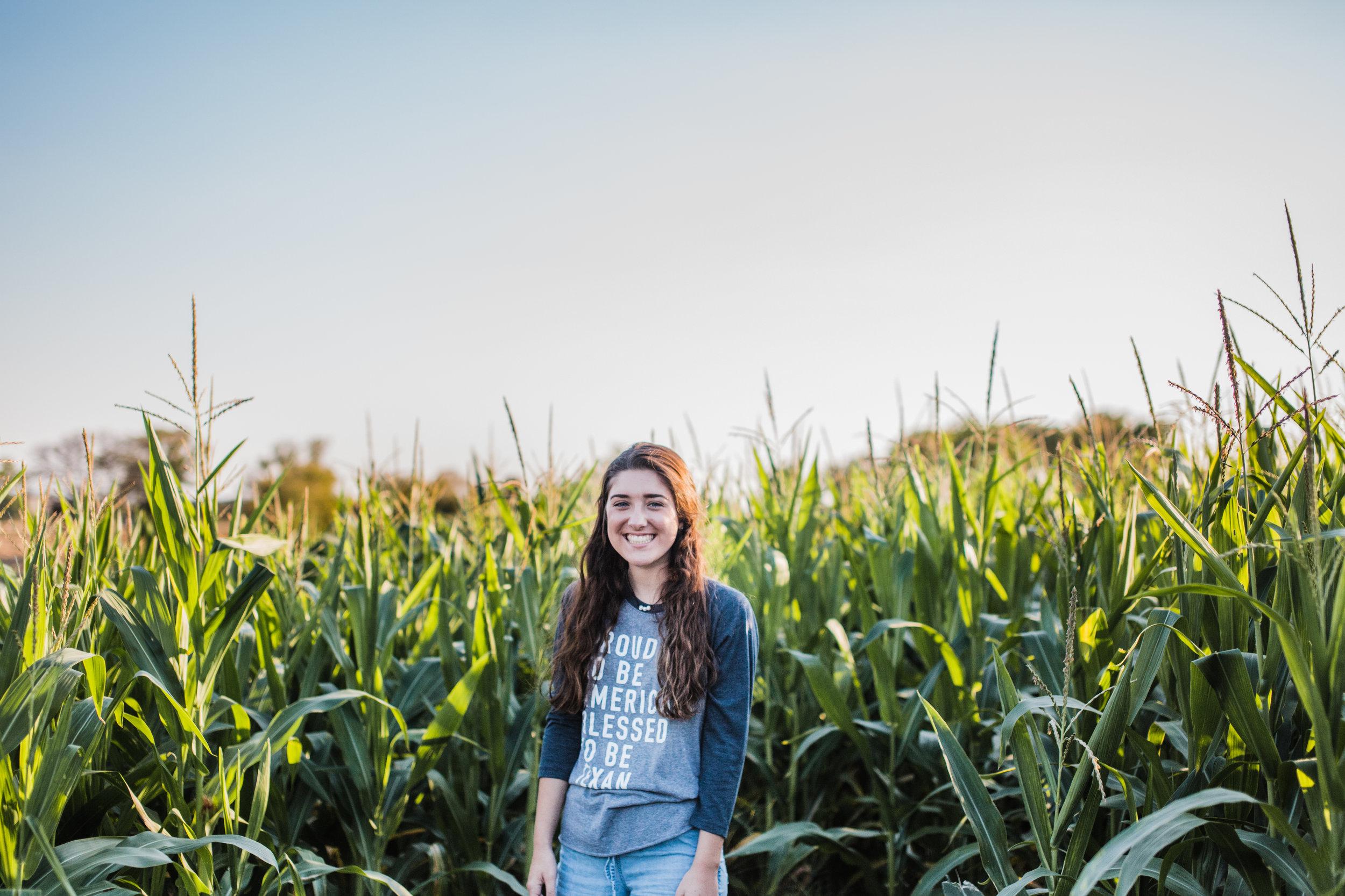 corn 1.jpg