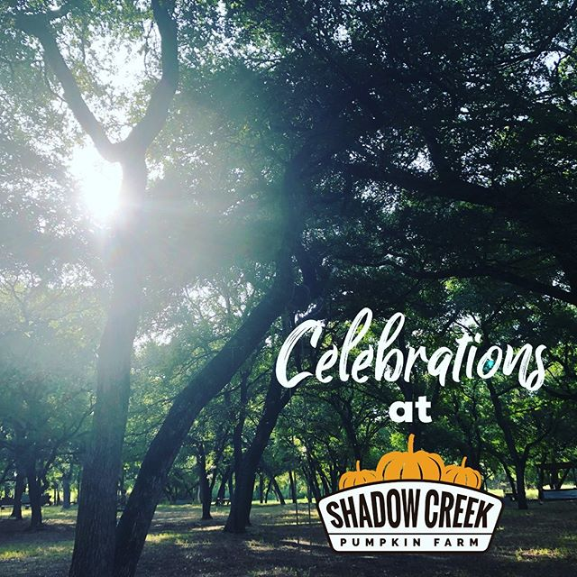 Early morning views of our park area get us excited about all of the joy and celebrations to come! ... We are now taking reservations for BIRTHDAY PARTIES this fall at Shadow Creek! Find out more at www.shadowcreekpumpkinfarm.com/birthdayparties and email us at info@shadowcreekpumpkin.farm to reserve your spot! ... #shadowcreekpumpkinfarm #welovethepumpkinfarmlife #pumpkin #pumpkins #pumpkinspice #fall #fallfun #family #familyfun @midlothianchamber @waxahachiechamber @waxahachie_dailylight @wfaa @goodmorningtexaswfaa @nbcdfw @cbs11karenborta @fox4news @dallasnews @dallasmomsanddads @dallasdadsgroup