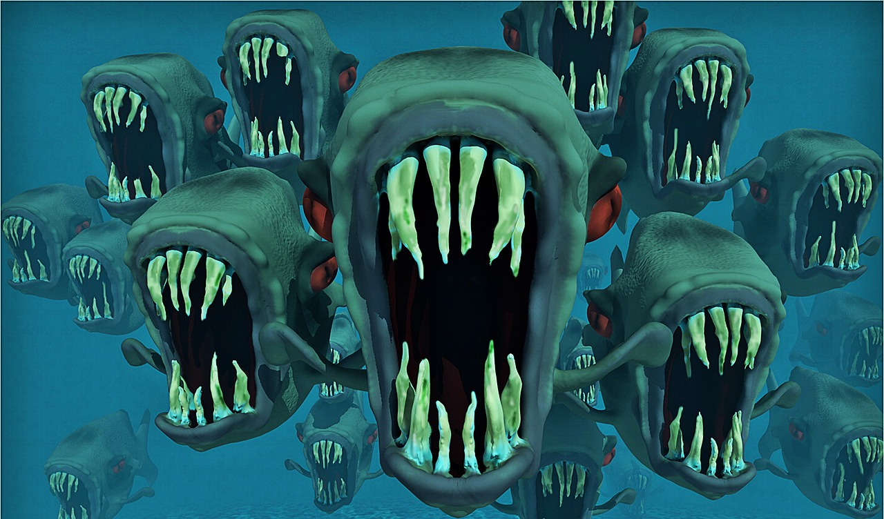 piranhas-123287_1280 (1).jpg