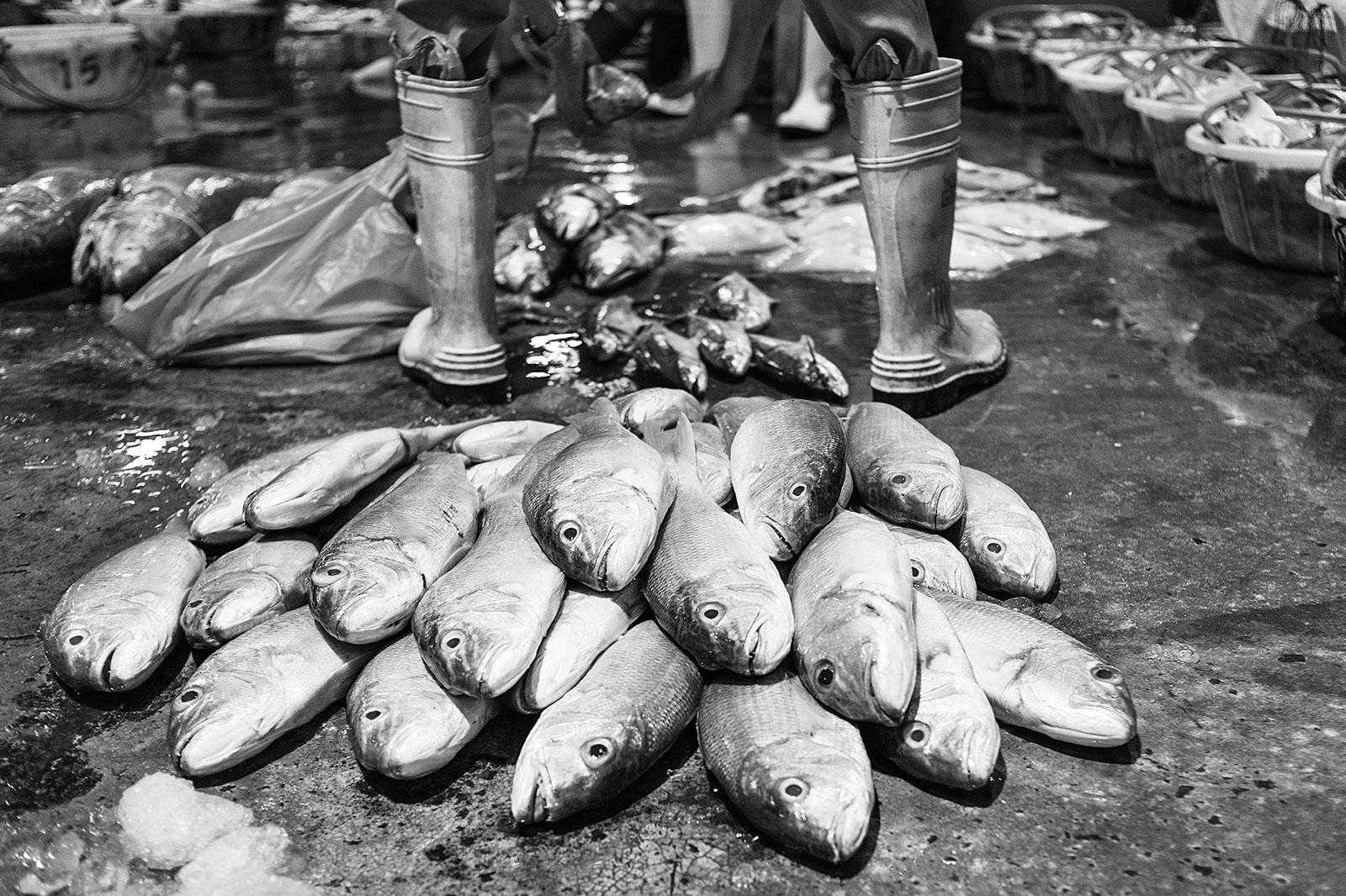 JurongFishPort Documentary_28022016_LAN3299bw.jpg