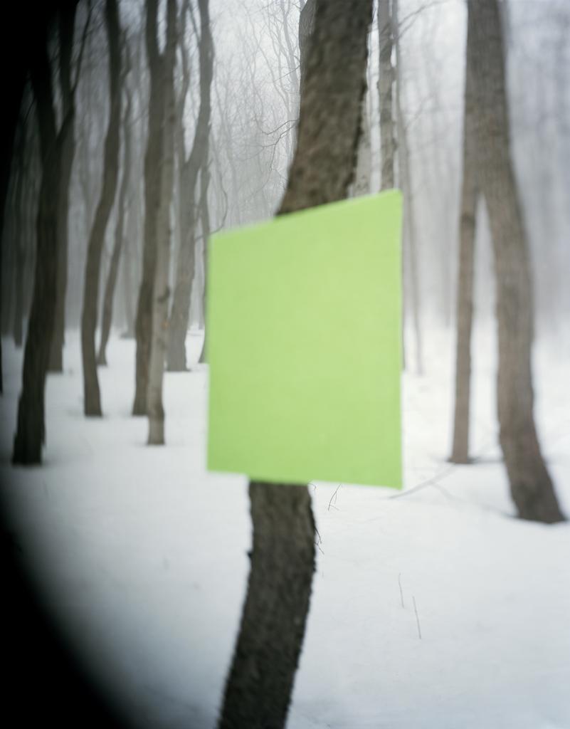 WoodWork#12,2014.jpg
