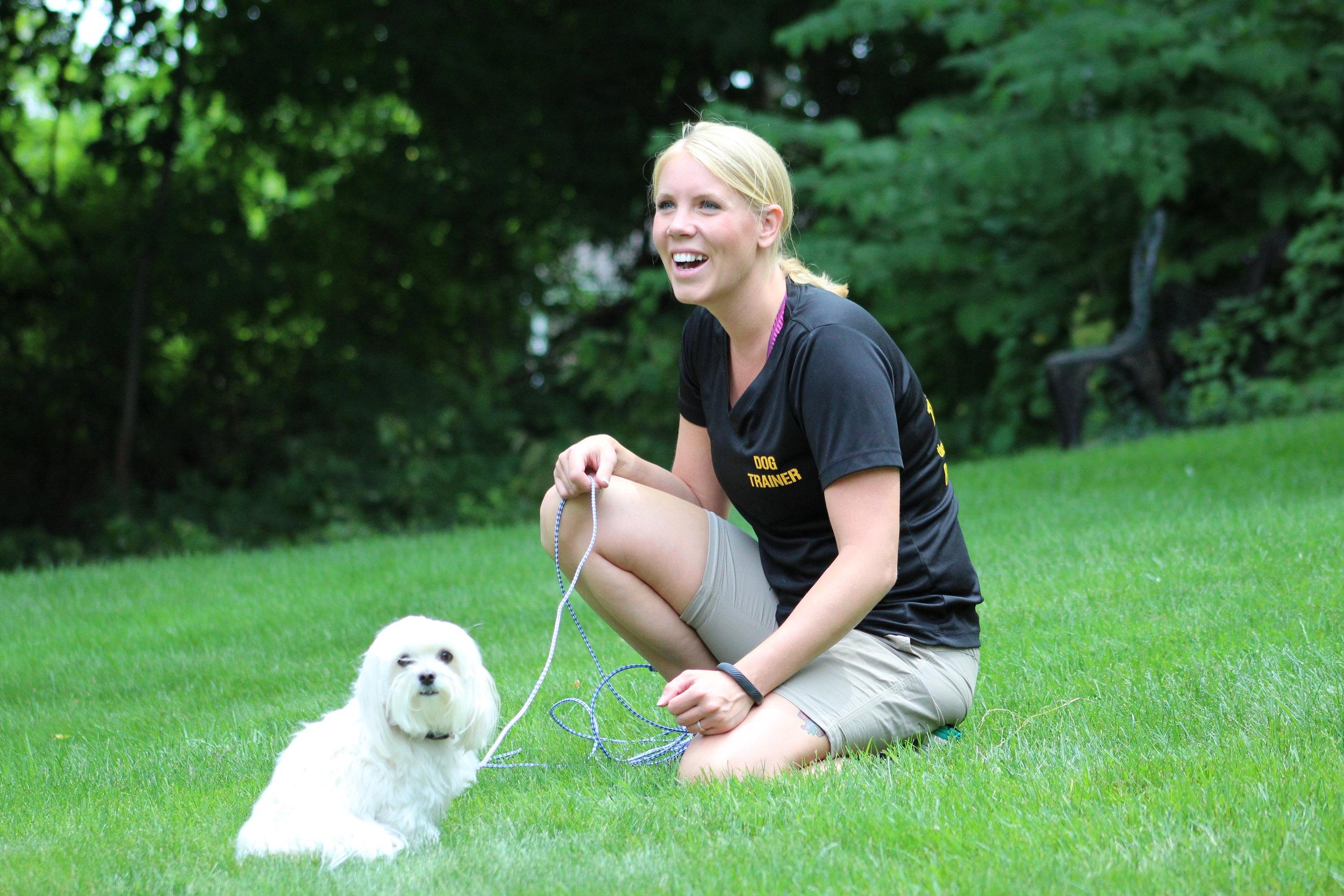 Pittsburgh, PA dog training small dog