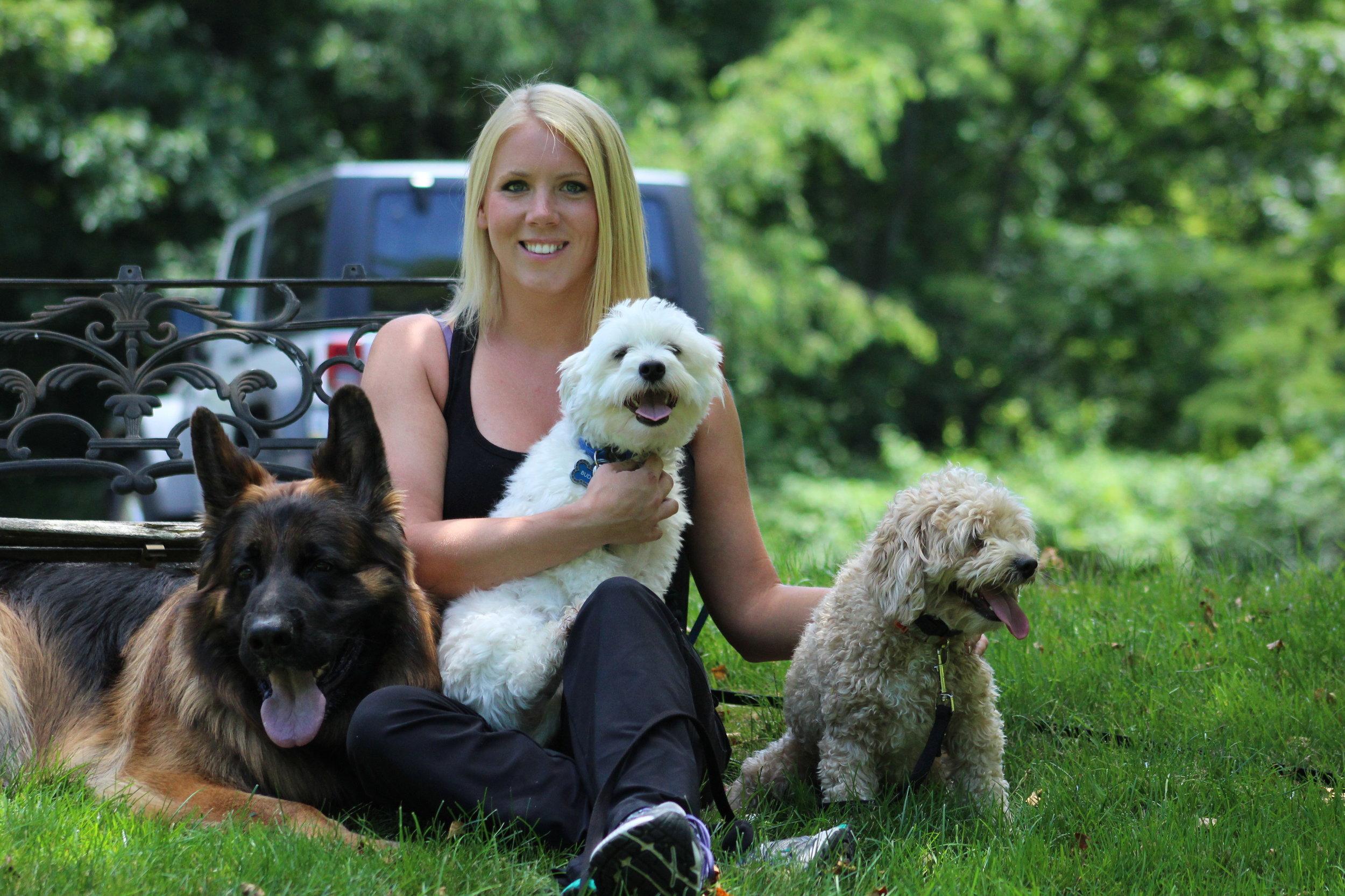 Pittsburgh Dog Trainer