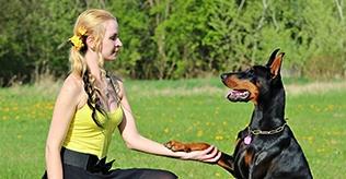 dog-trainer small.jpg