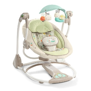 The  Ingenuity ConvertMe Swing  from Babies R Us.