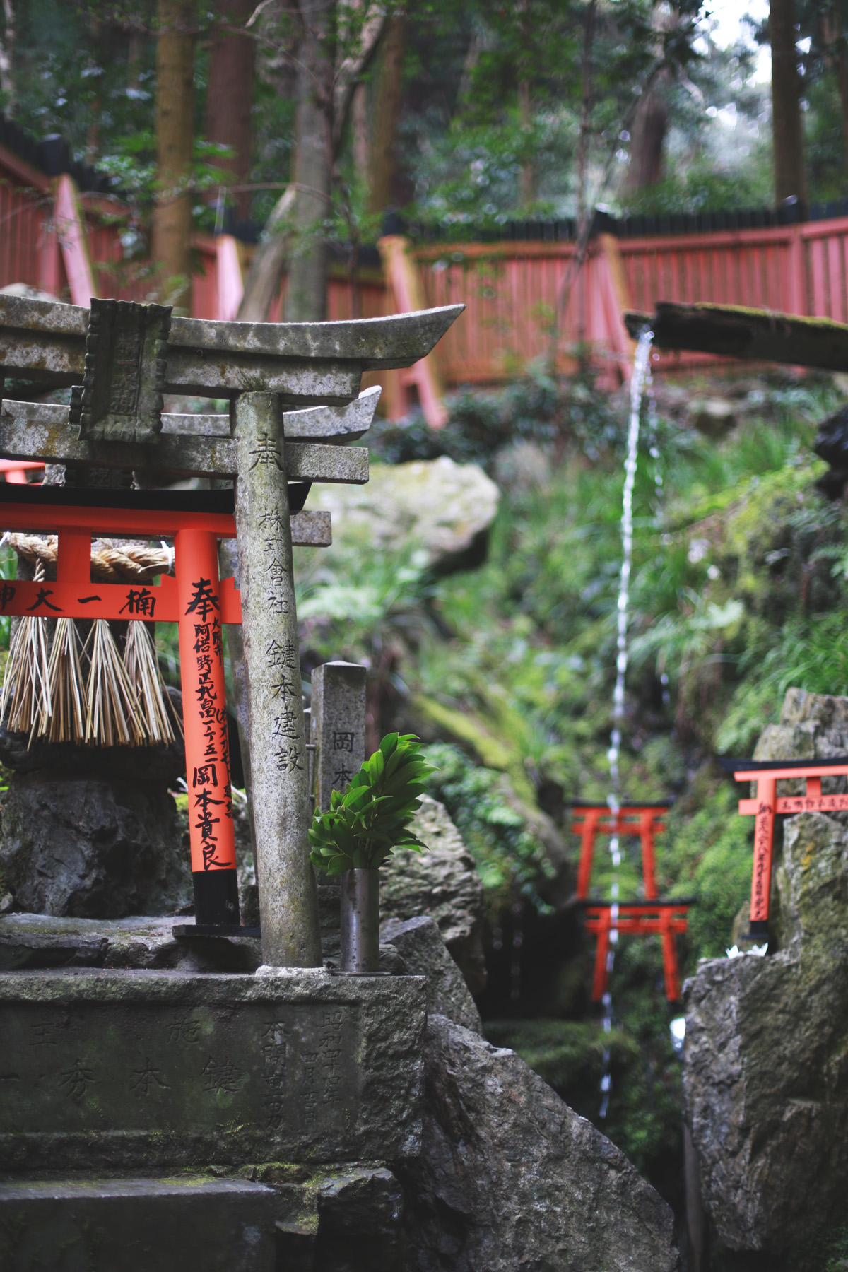 & Away We Went | Travel Blog | Inari Shrine | Kyoto, Japan