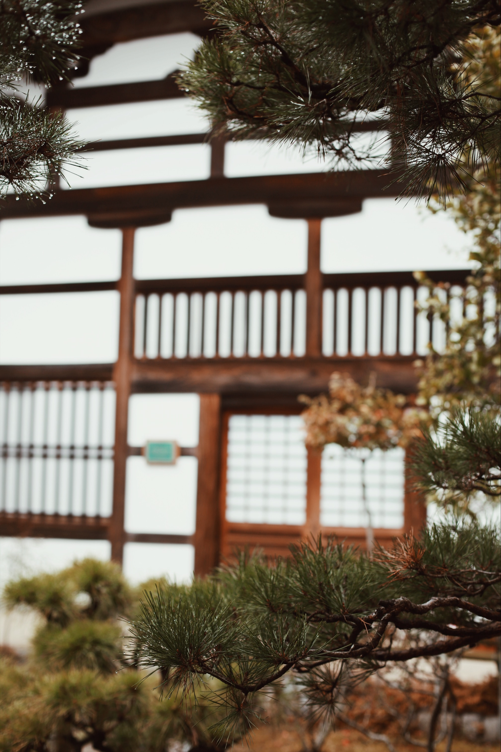 A Two-Day Kyoto Itinerary   Guide to Japan   & Away We Went   #Travel Blog   #Wanderlust