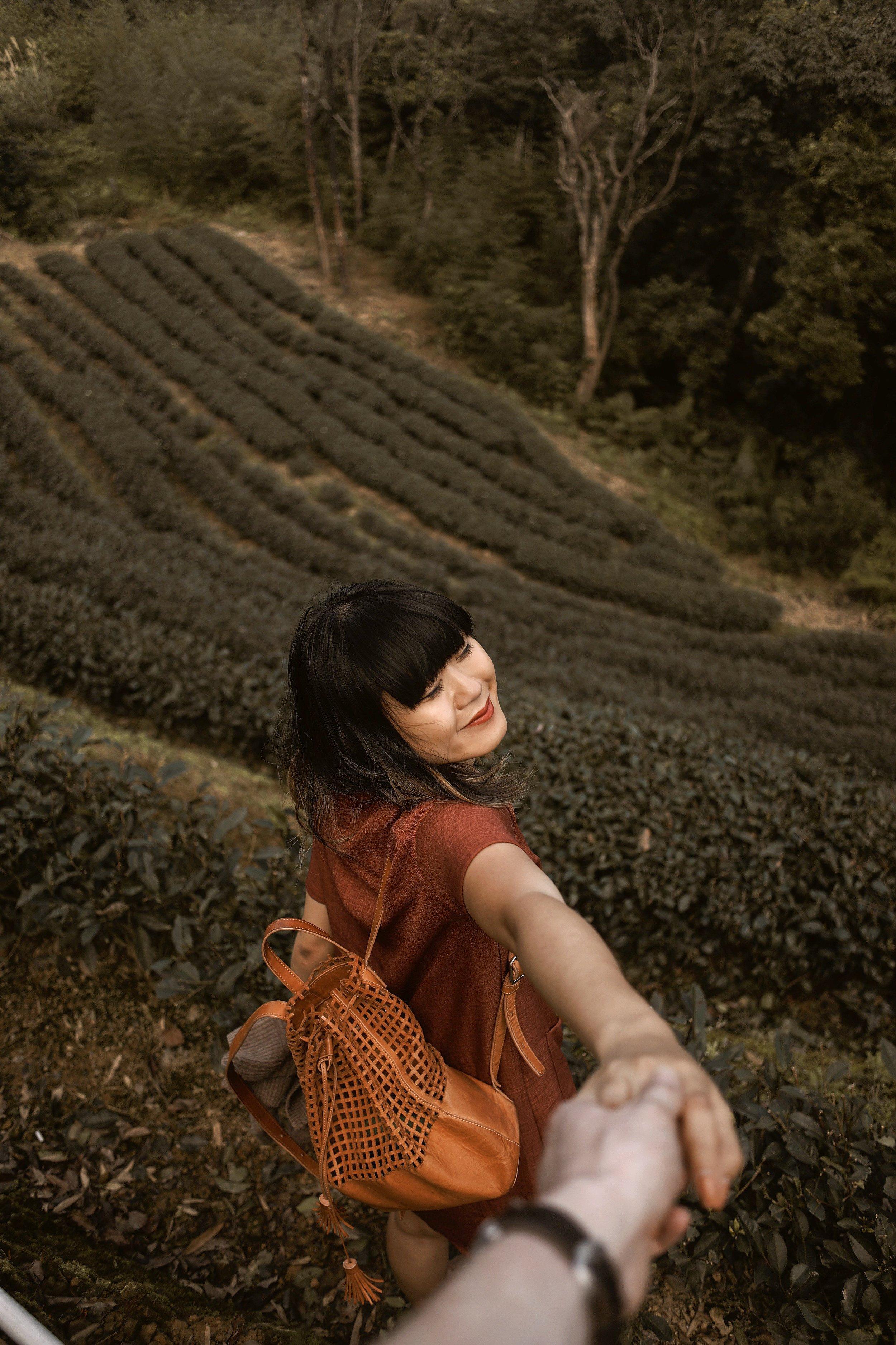 And Away We Went | Travel Blog | Taipei, Taiwan | Maokong | Gondola Hiking Tea Plantations