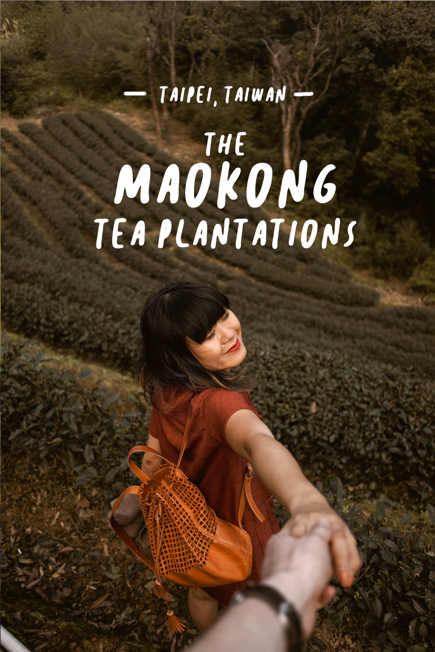 Taipei, Taiwan Day Trips | A Morning Hiking in Maokong Tea Plantations | Gondola Ride | Travel Blog | #Wanderlust