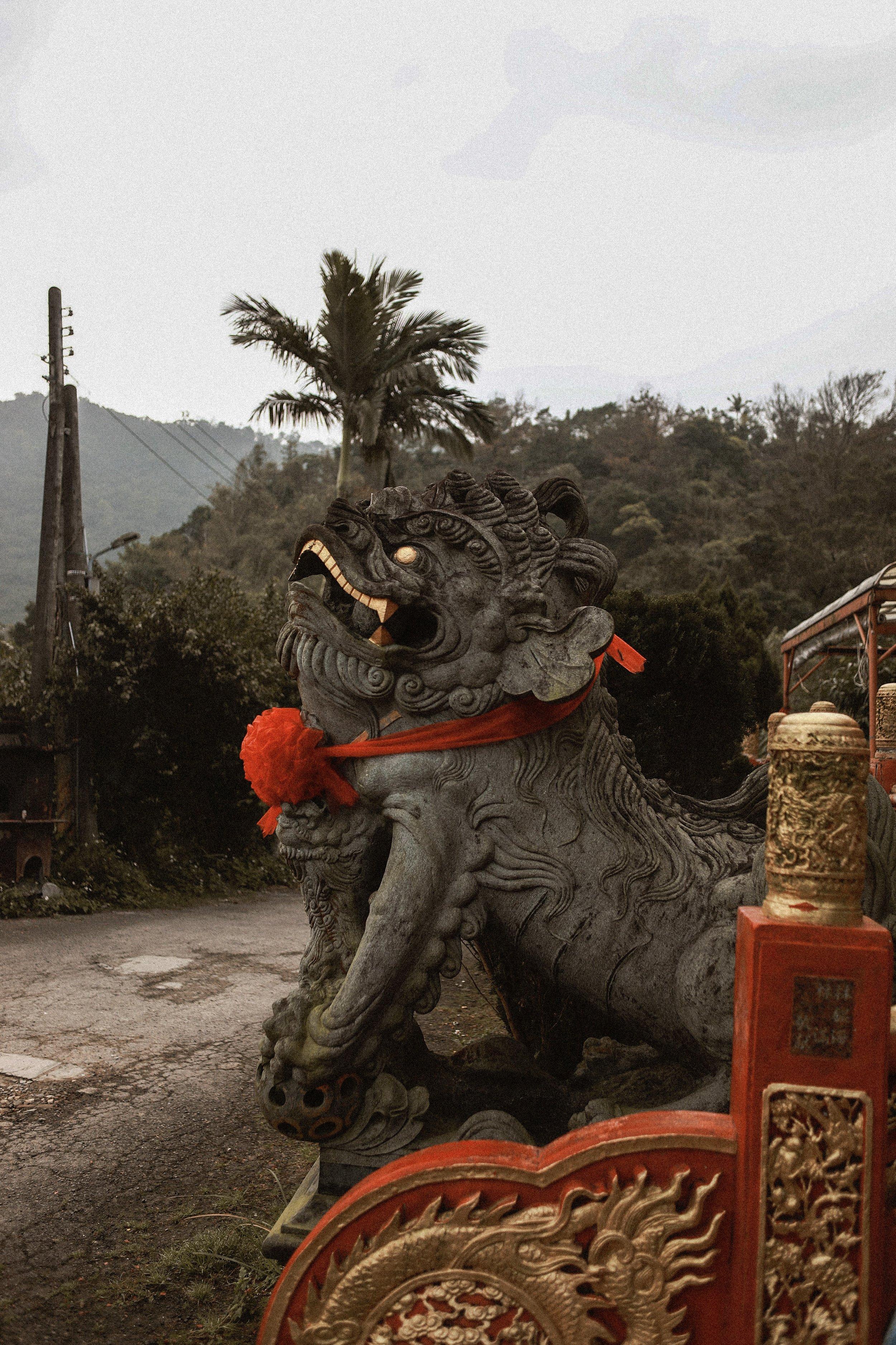 Elephant Mountain | Taipei Taiwan | Sunrise Hiking