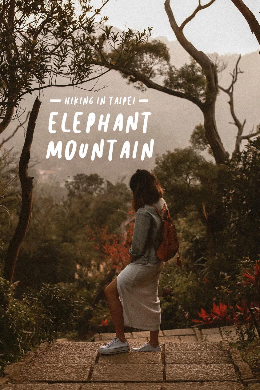 Hiking in Taipei | Elephant Mountain