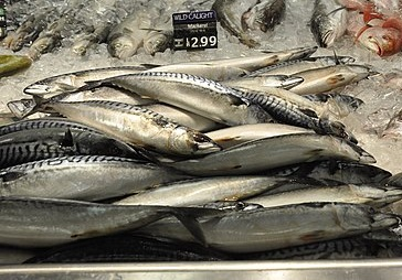 Mackerel is one of the species Oceana found to be mislabeled. Photo:  Jarek Tuszyński