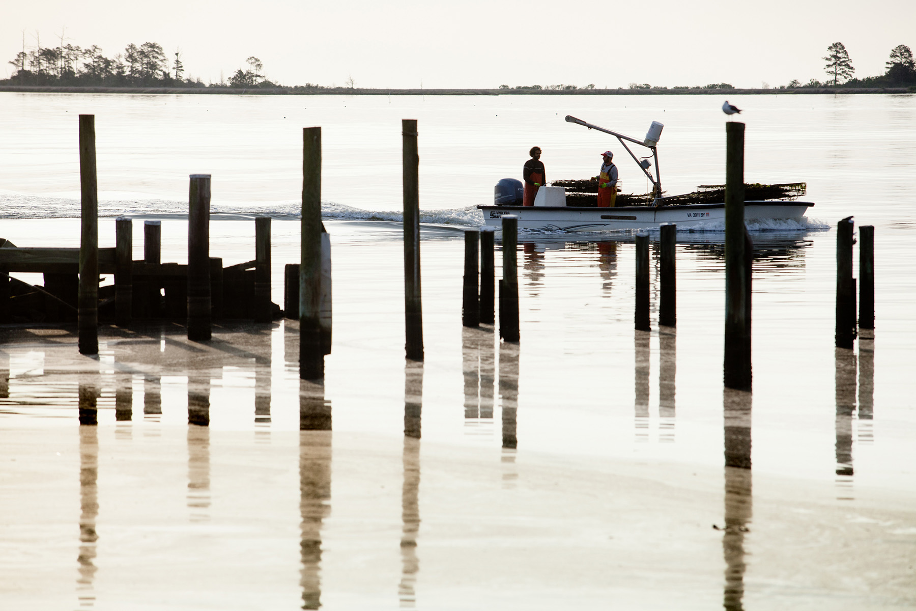 Photo: Will Parson/ Chesapeake Bay Program