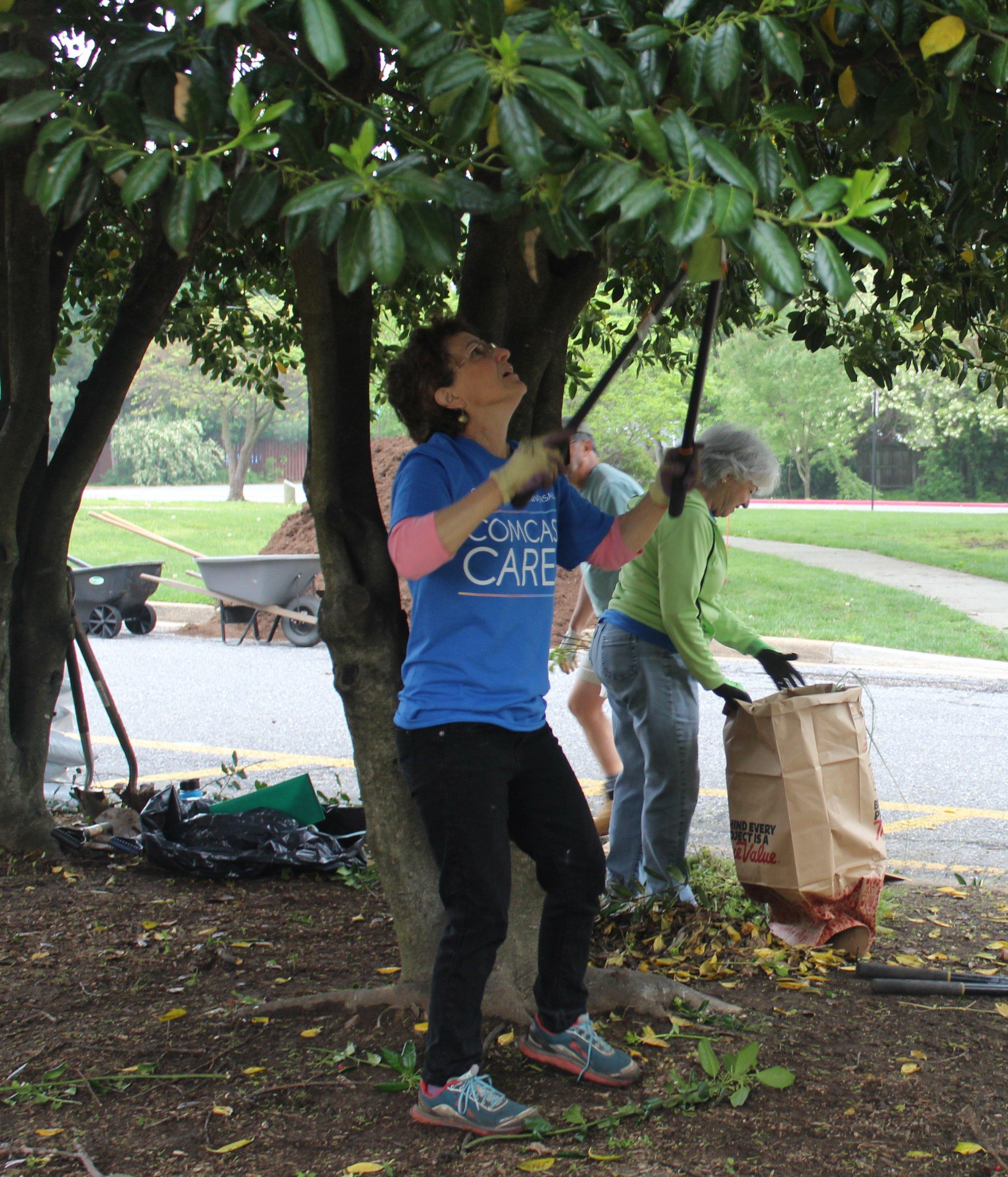maryland hall volunteer.JPG