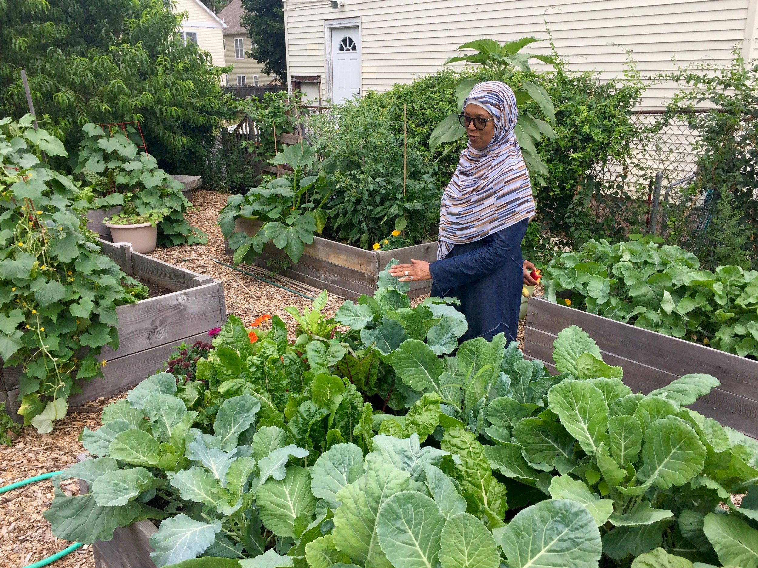Jamilah Rasheed, the driving force behind the Field of Greens community garden in the Hill neighborhood of New Haven, CT