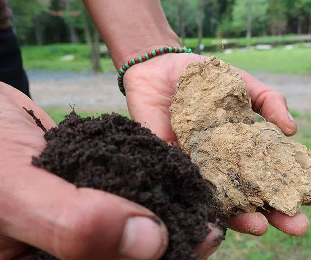 soil and clay.jpg