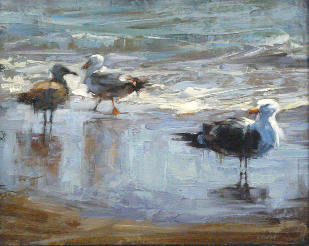 Gulls of Ocean Beach