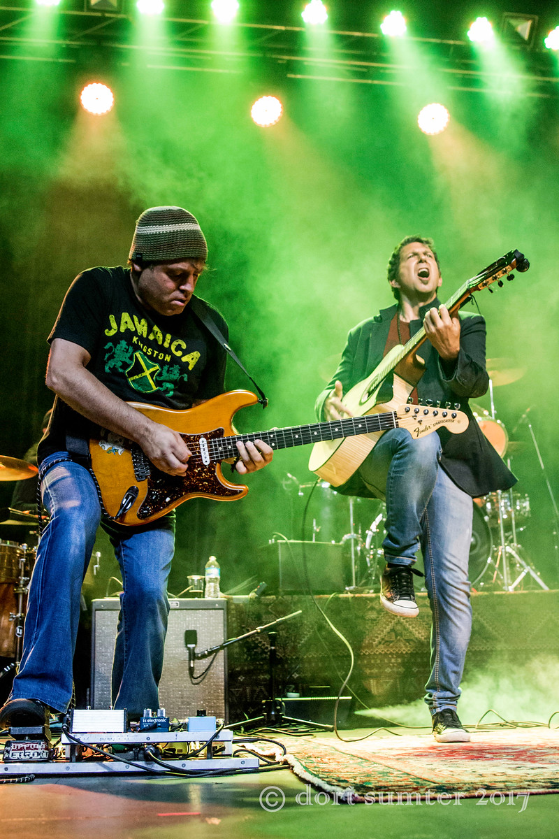 Reggae-2084-X3.jpg