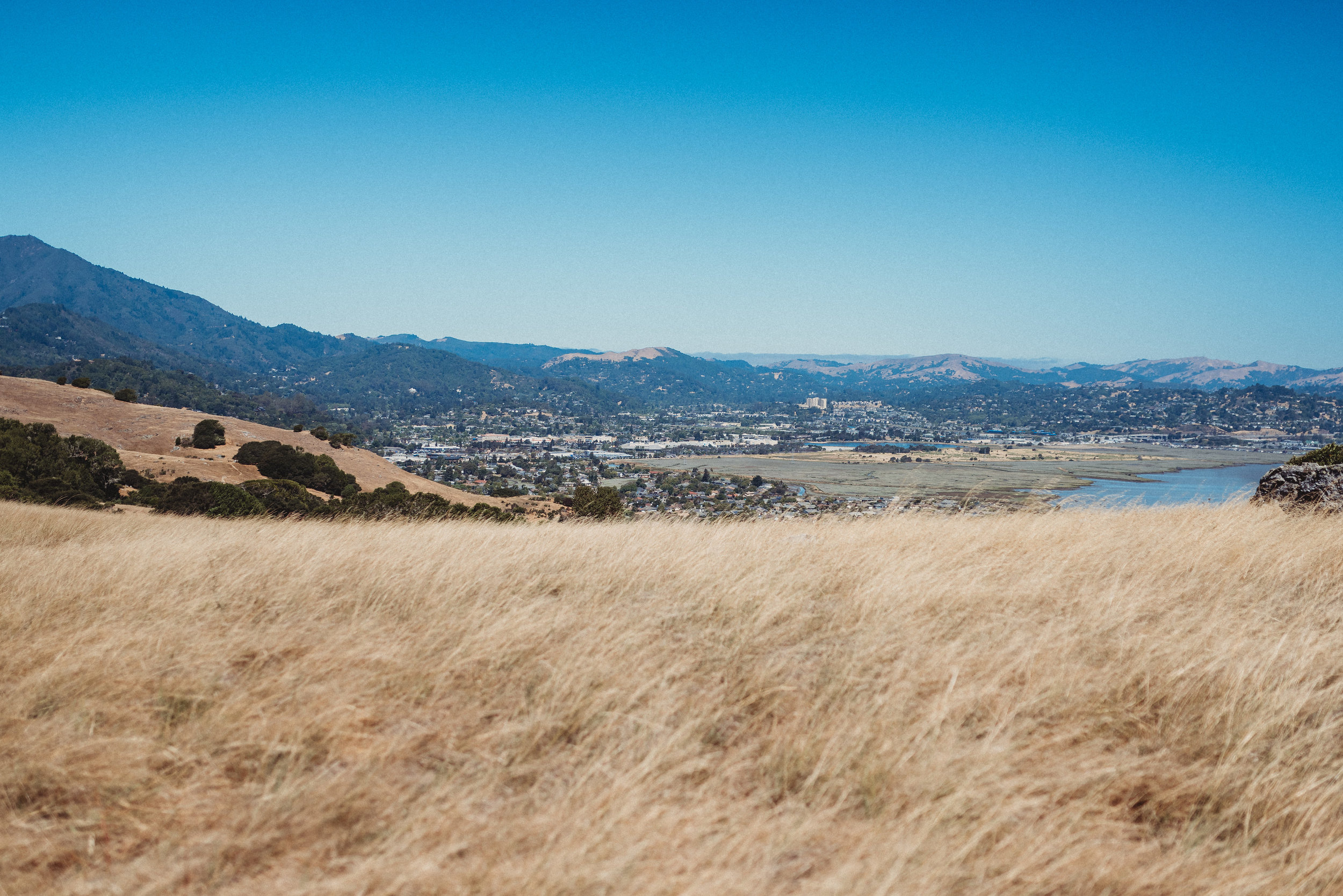 sunday morning family hike family time quality time california mountains hiking1.jpg