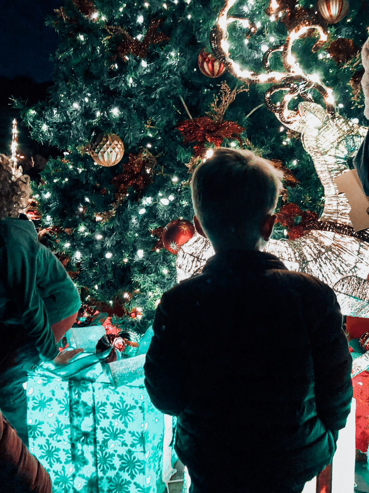 servino-tiburon-christmas-local-festive-family-time-19.jpg