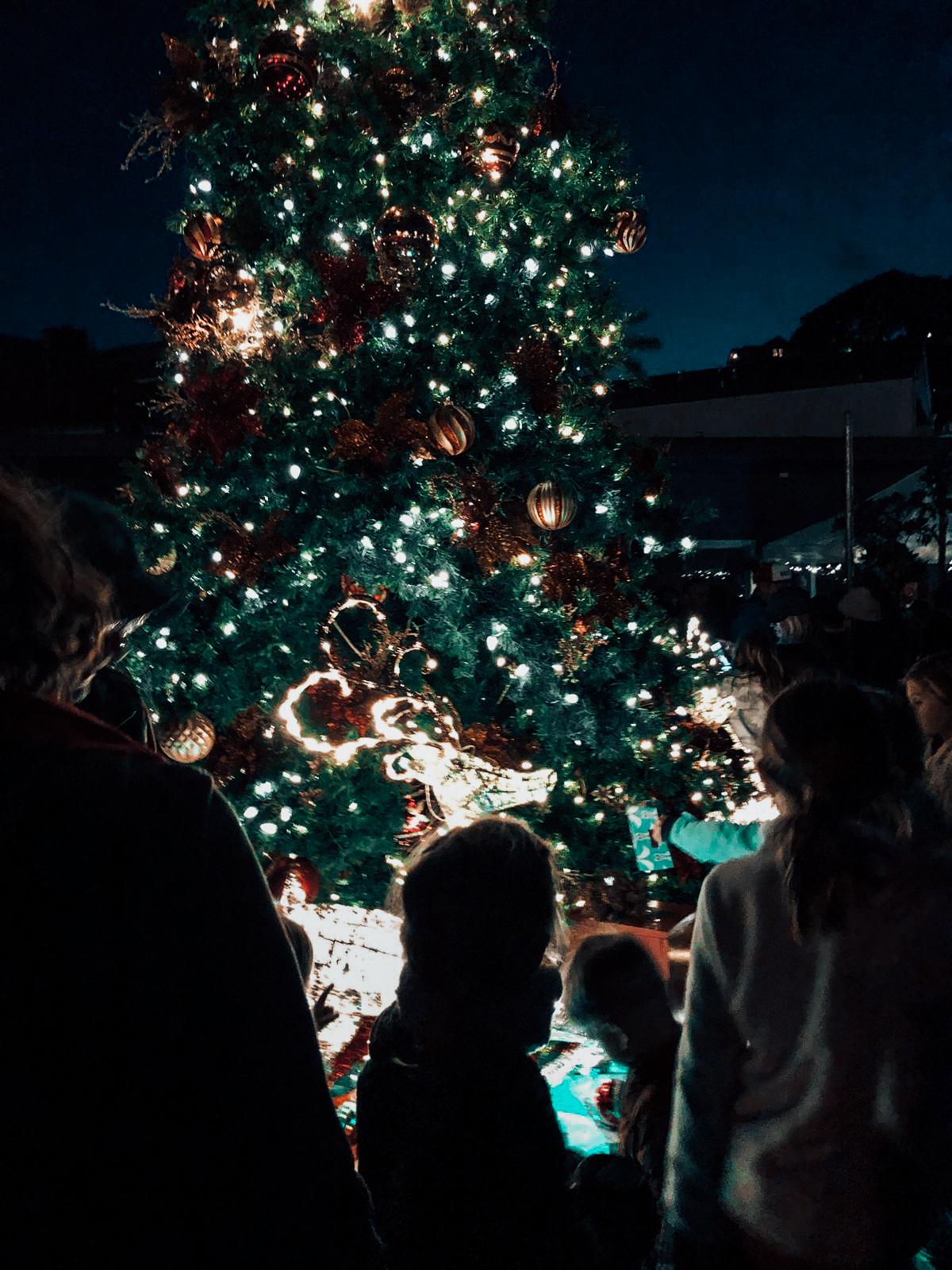servino-tiburon-christmas-local-festive-family-time-21.jpg