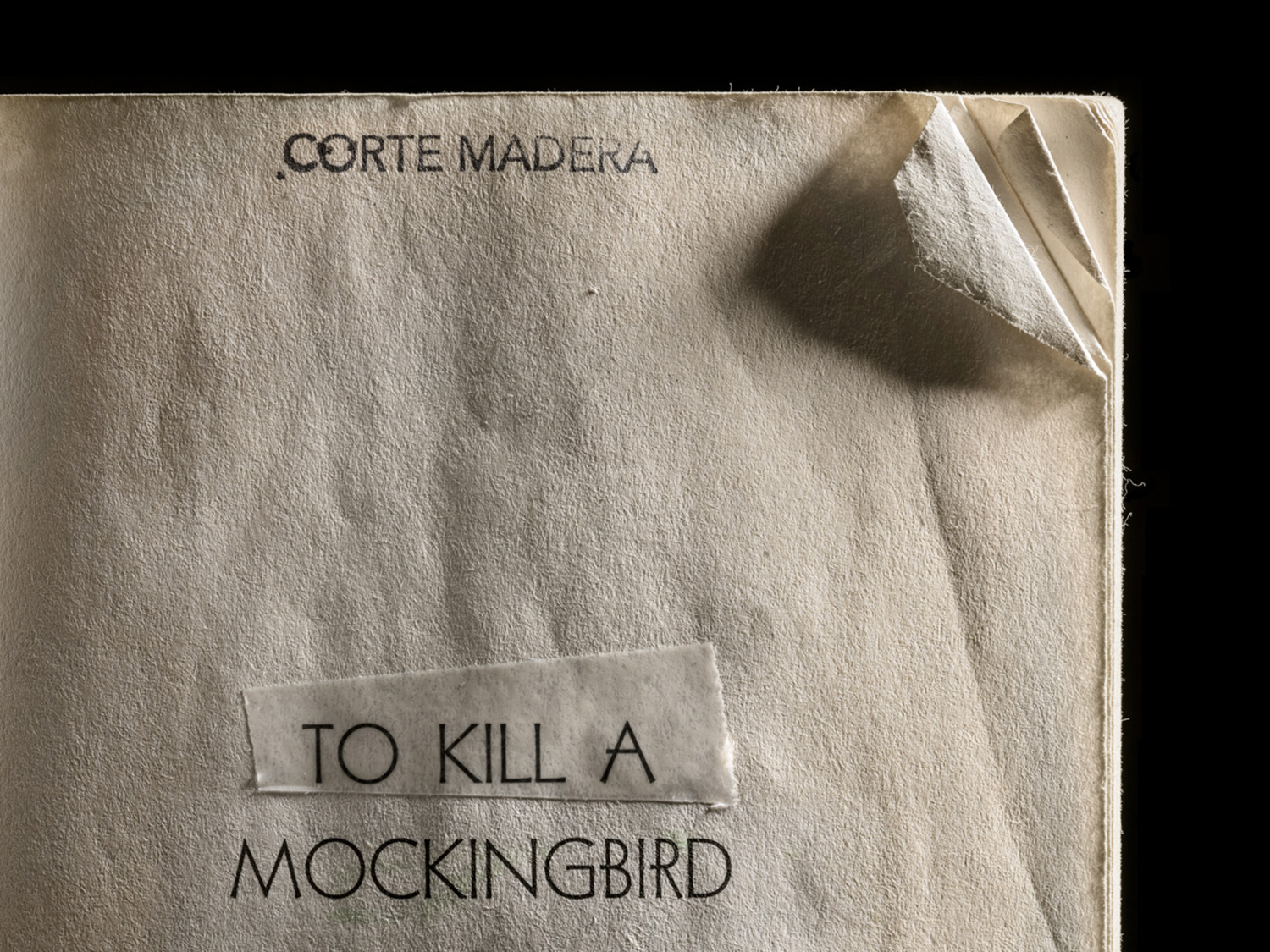 To Kill a Mockingbird, Dog Earred Corner