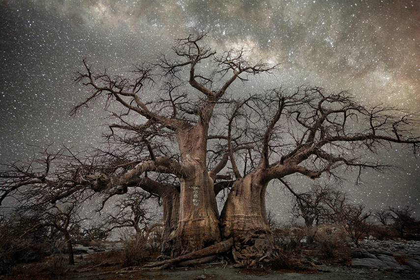 Beth Moon, Diamond Nights, 2014