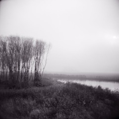 Poetics of the Landscape I