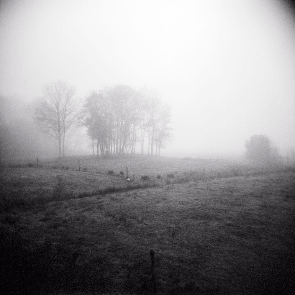 Poetics of the Landscape XIII