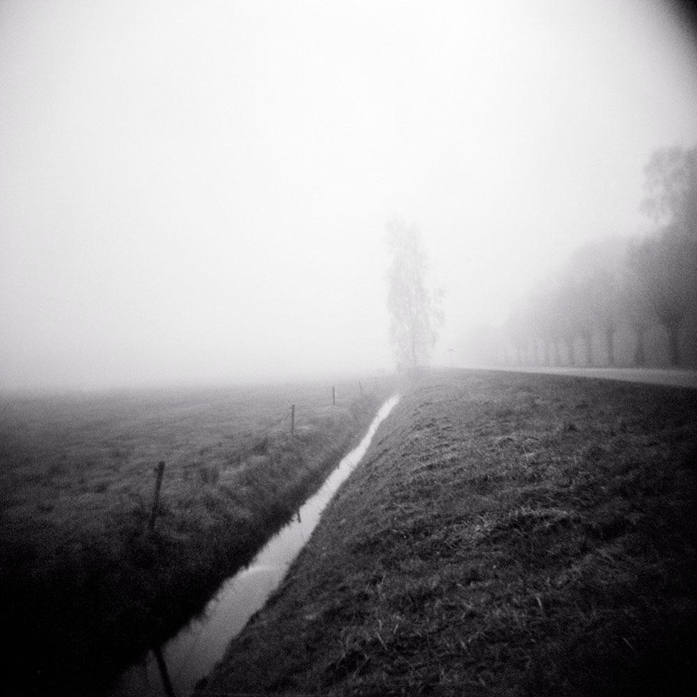 Poetics of the Landscape XVI
