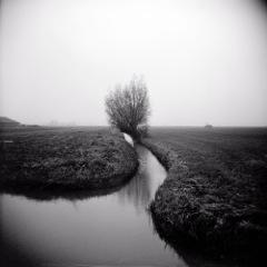 Poetics of the Landscape XVII